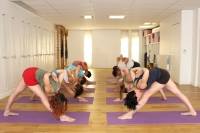 http://yoga-montpellier.com/files/gimgs/52_img0092.jpg