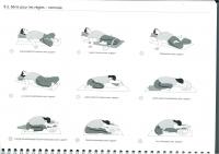 http://yoga-montpellier.com/files/gimgs/86_93-serie-pour-les-lunes-longue.jpg