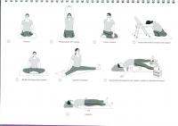 http://yoga-montpellier.com/files/gimgs/86_98-serie-pour-les-lunes--problemes-de-dos.jpg