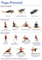http://yoga-montpellier.com/files/gimgs/86_seriefemmesenceintes-2.jpg