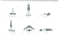 http://yoga-montpellier.com/files/gimgs/89_62-postures-abdominales.jpg