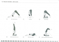 http://yoga-montpellier.com/files/gimgs/91_51-inversees-serie-courte.jpg
