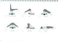 http://yoga-montpellier.com/files/gimgs/91_54-inversees-serie-longue.jpg